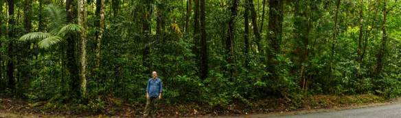 Kelvin Davies, Director of Rainforest Trust Australia at lot 79 Buchanan Road, Daintree Photo: Rainforest Trust